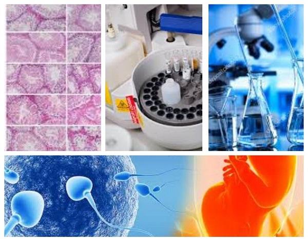 Лабораторія репродуктивної ендокринології